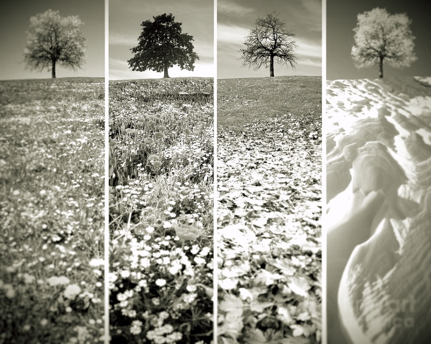 seasons_Fotor